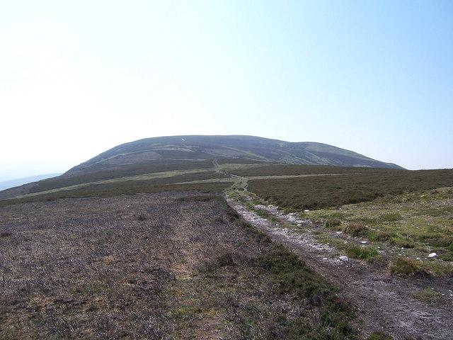 Grouse Moor showing muirburn