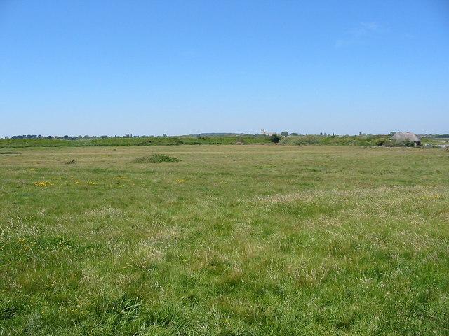 Ancient Grassland Hengistbury Head Dorset