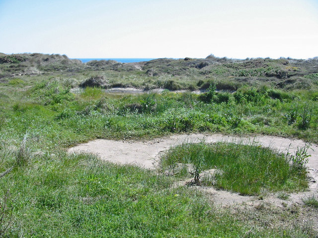 Ponds on Hengistbury Head Dorset