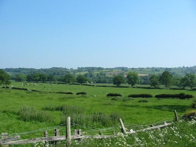 View towards Swinton Park