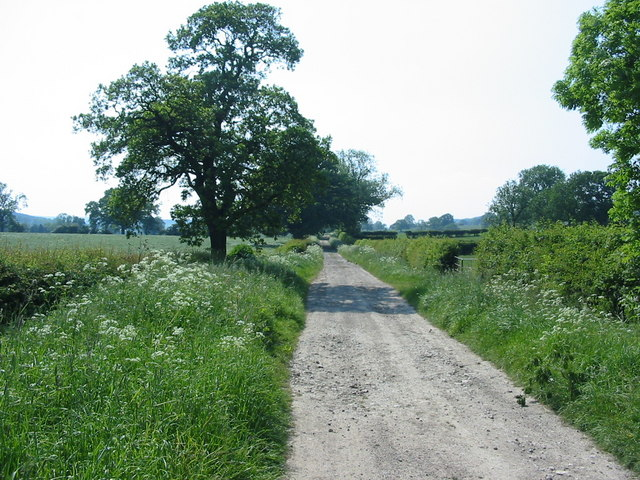 Track that forms part of the Ripon Rowel Walk
