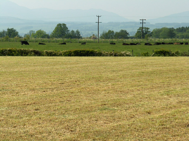 Pasture and mown meadow near Gargunnock