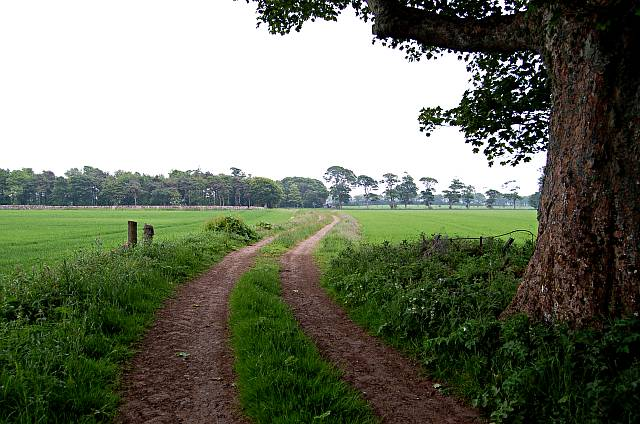 Farm road by Elie House