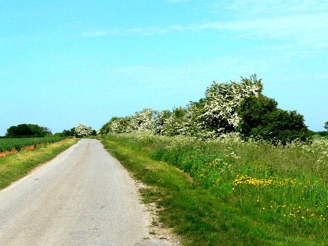 Road to Gardham from Newbald Lodge