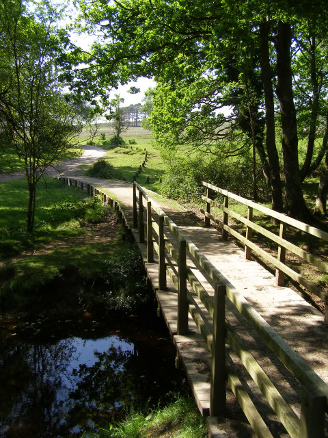 Footbridge over Dockens Water, New Forest