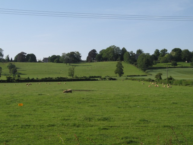 Pasture South of Seend