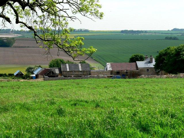 Flower Hill Farm