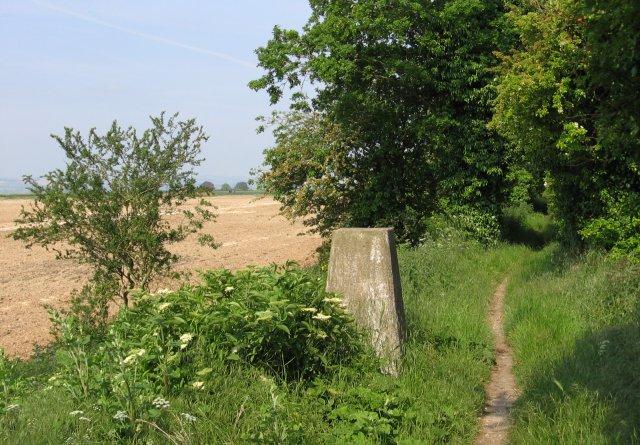 Ridgeway Trigpoint