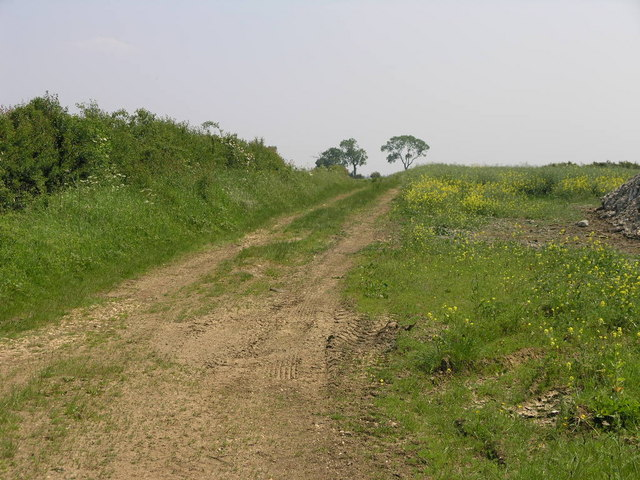 Farm Track and Smell