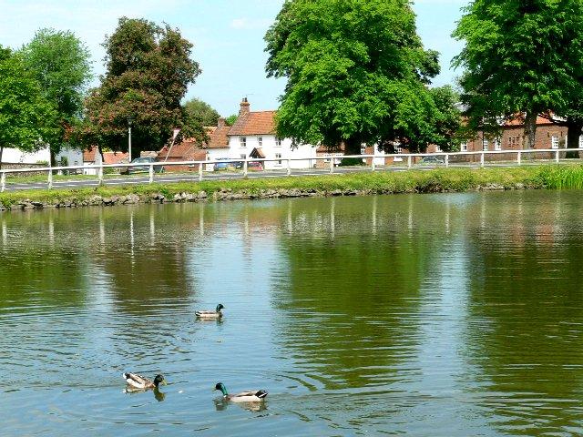 Bishop Burton across the Village Pond