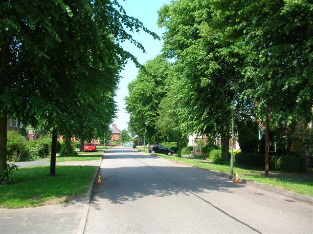 Knapton Lane