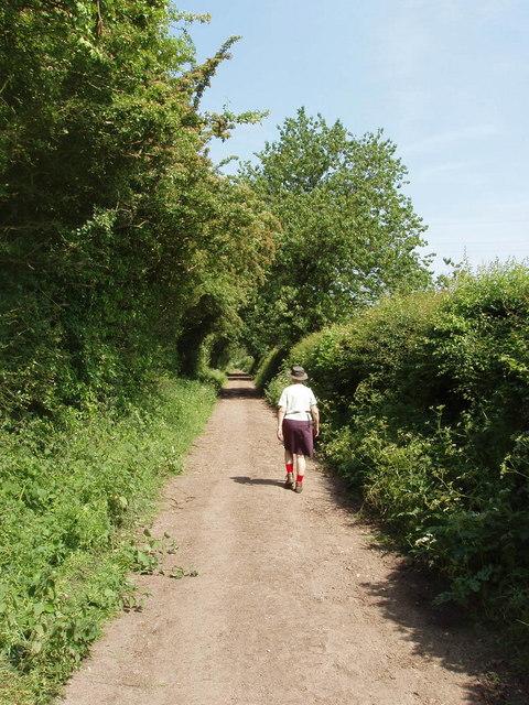 Grubbins Lane, Speen