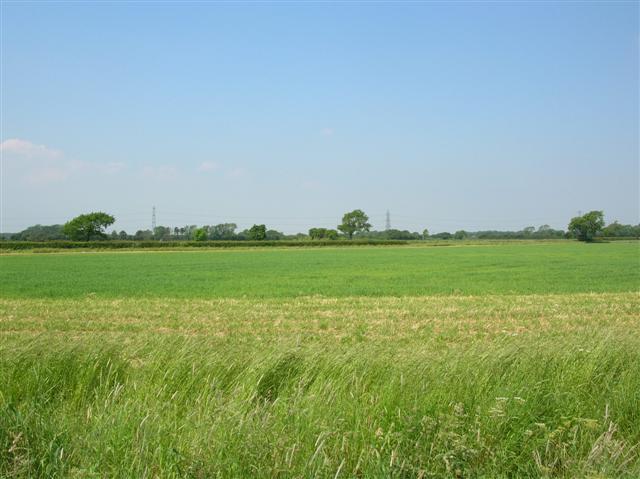 Between Moor Monkton & Hessay