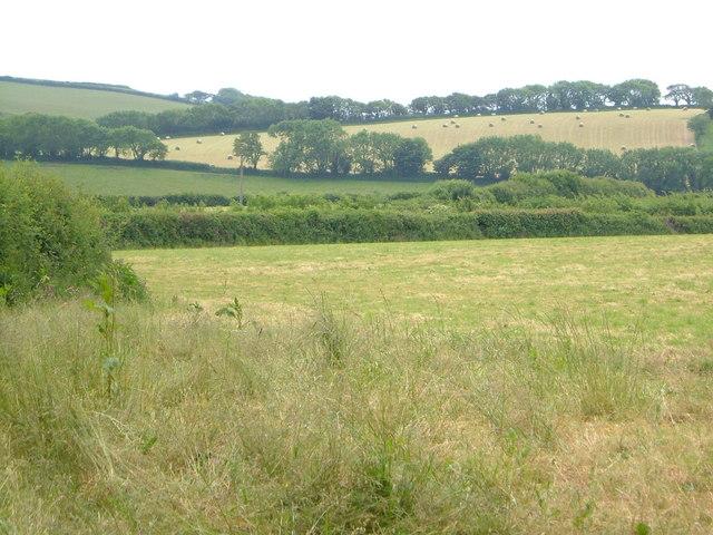View at Poulston
