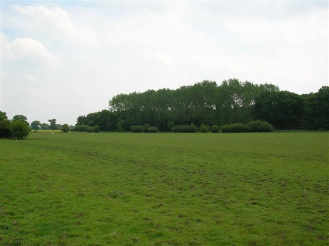 Deighton Plantation