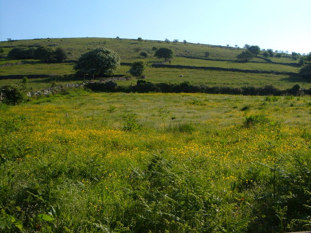 Fields on the lower slopes of Cosdon Hill