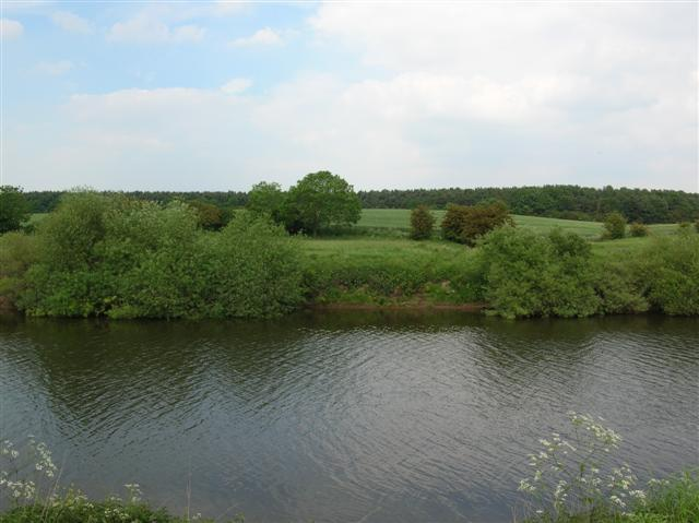 The Ouse & Overton Wood