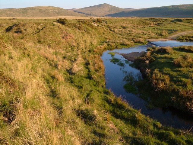 River Taw meander