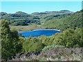 NR8595 : Lochan an Torrnalaich by Patrick Mackie