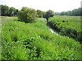 SP7512 : River Thame near Eythrope by Nigel Cox