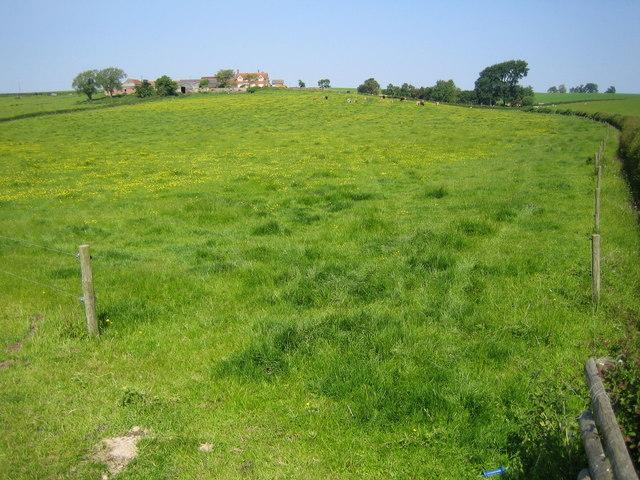 Upper Winchendon: Mainshill Farm