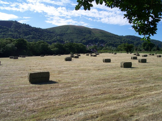 A Fair Field Full of Bales