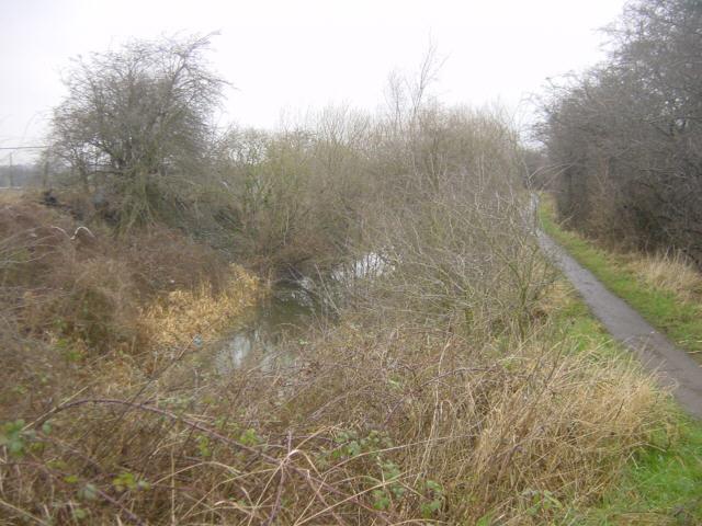 Barnsley Canal near Carlton