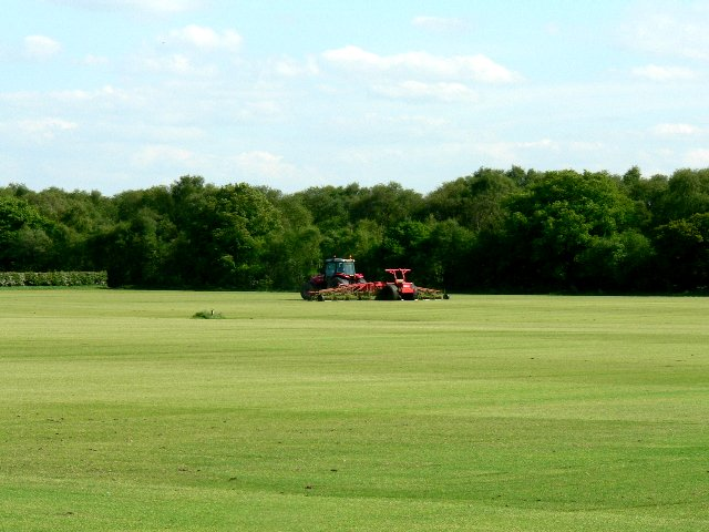 Growing Turf Commercially