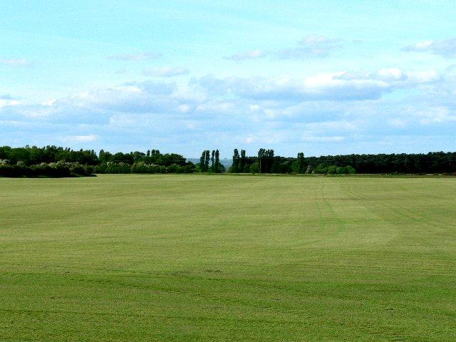 A Gigantic Lawn
