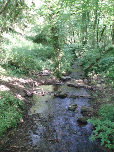 Stream in Biddlecombe