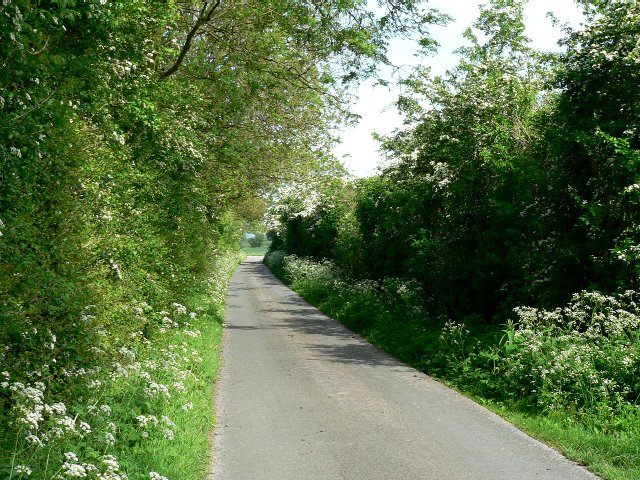 Drain Lane towards Tollingham
