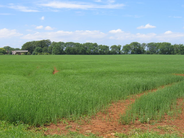 Green fields and red earth at Edgehill Farm