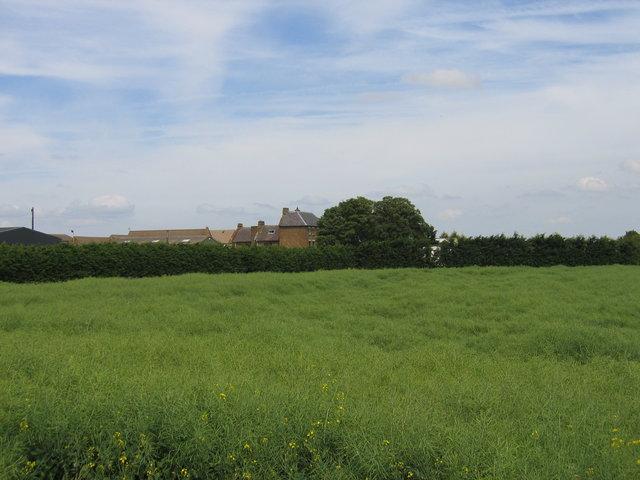 Sugarswell Farm