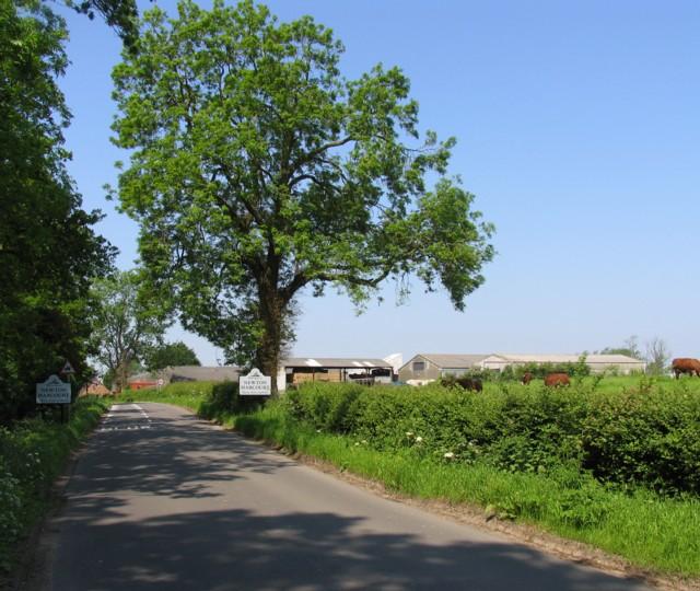 Approaching Newton Harcourt