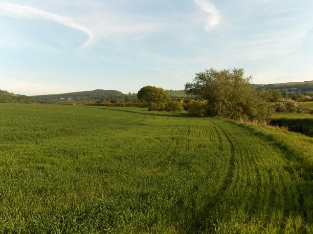 Farmland next to Touch Burn