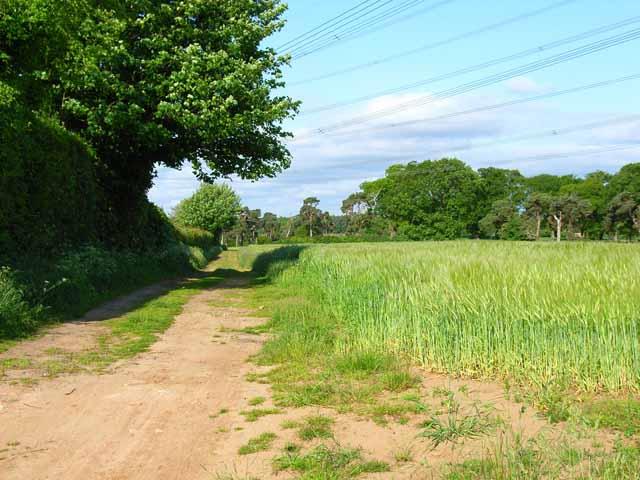Field at Gromford, near Snape