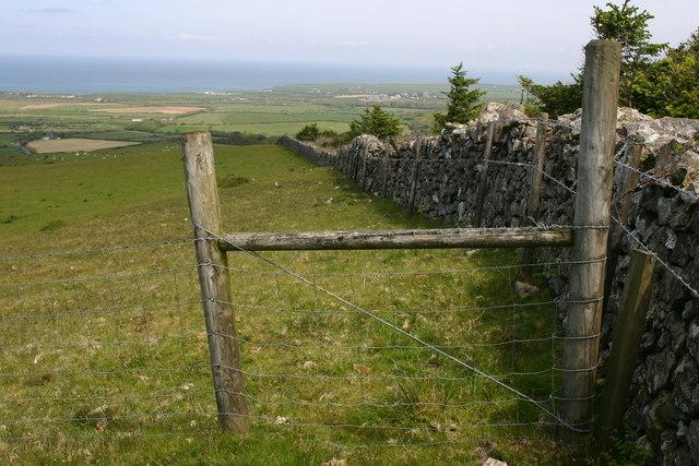 Northern slopes of Mynydd Cefnamwlch