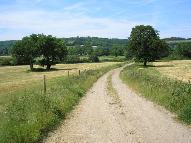 Bridleway with oaks, near Titsey, Surrey