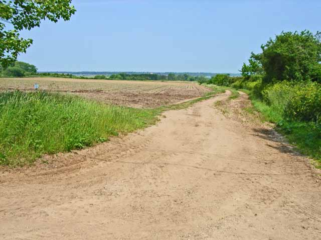 Field near High Street, Iken