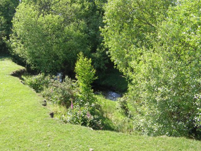 Bank slippage by Dockens Water, Black Heath, New Forest