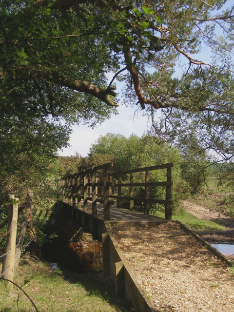 North Hollow Bridge, Dockens Water, New Forest