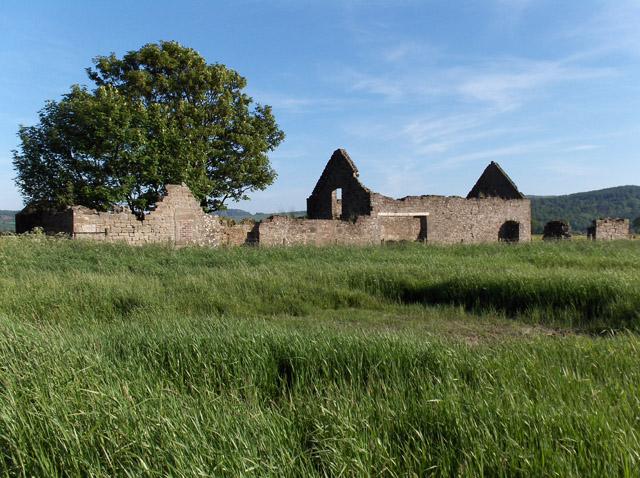 Ruin on Drip Moss
