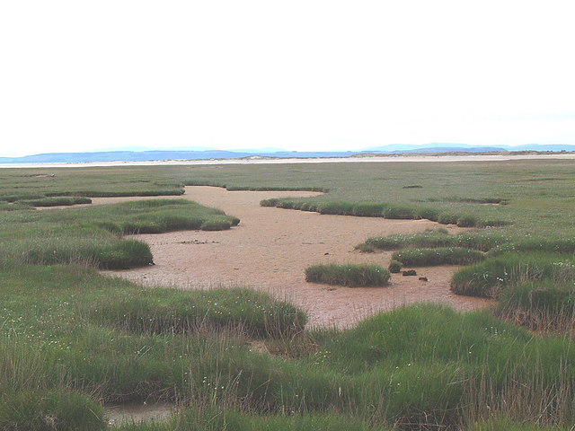 Culbin Salt Marsh