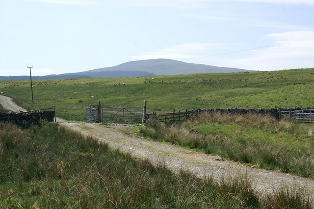 Track to Lochanhead