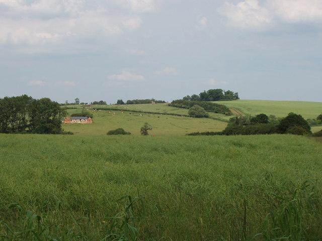 Fields with views towards Chilton