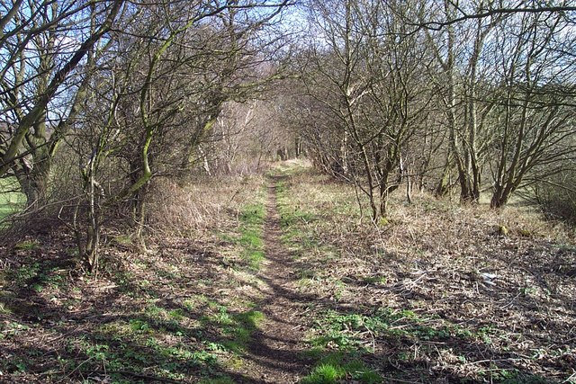 Footpath to Red Moor