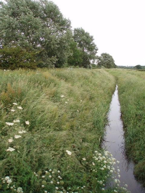Stream headed for the Severn Estuary