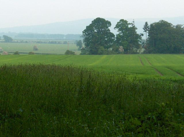 Farmland, Coldoch