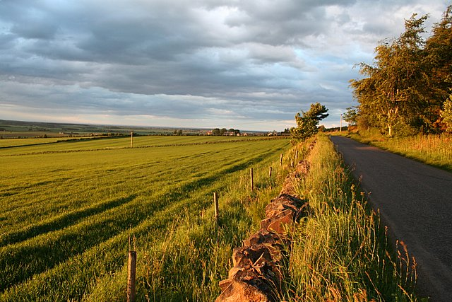 Looking towards Quarrywood