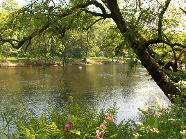 The River Teith